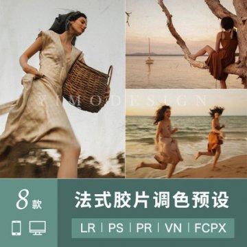 LR预设法式复古胶片达芬奇滤镜LUT